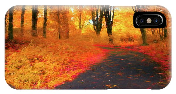 Emmaus Community Park Path - Colors Of Fall IPhone Case