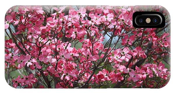 iPhone Case - Enchanted Pink Dogwood Tree by Carol Groenen