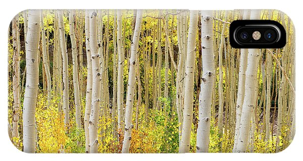 Endless Aspens 2x1 IPhone Case