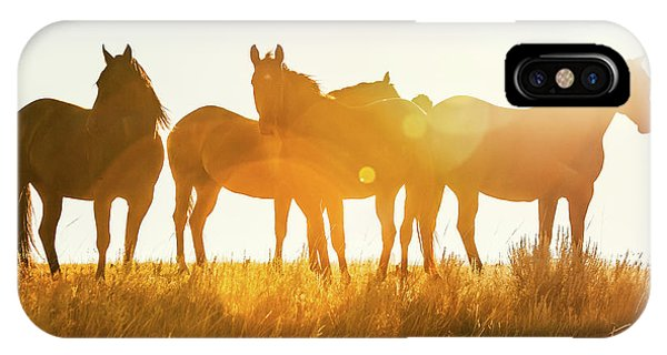 Horse iPhone Case - Equine Glow by Todd Klassy