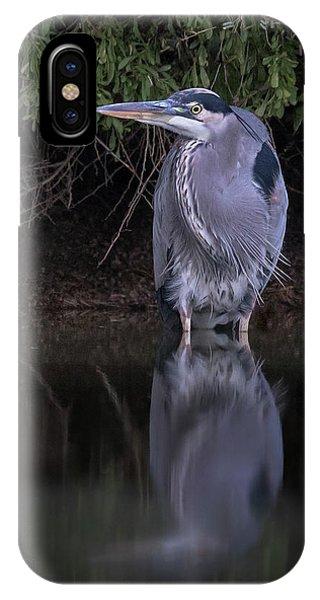 Evening Stalk IPhone Case