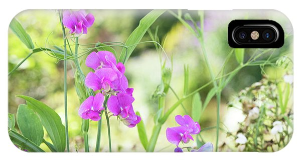IPhone Case featuring the photograph Everlasting Pea Flowers by Tim Gainey