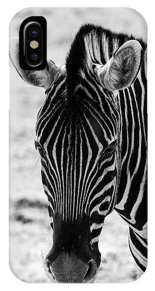 Face Of Zebra IPhone Case
