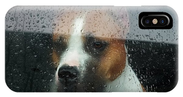 Pitbull iPhone Case - Faithful Dog Sitting In A Car And by Dimedrol68