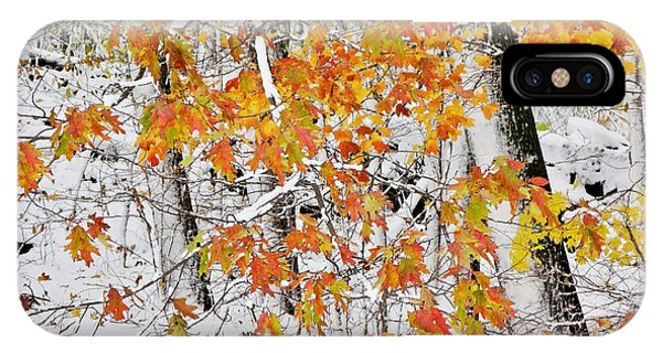 Fall And Snow IPhone Case
