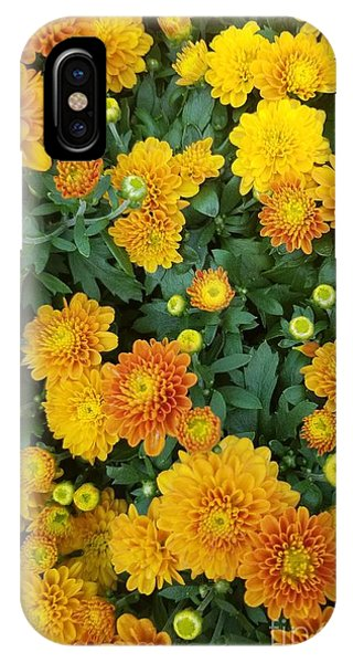 IPhone Case featuring the photograph Fall Chrysanthemums Autumn Orange by Rachel Hannah