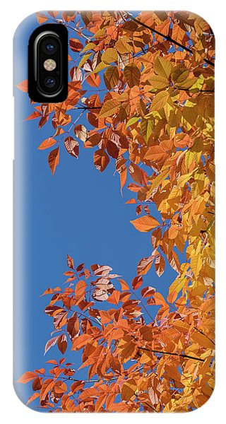 IPhone Case featuring the photograph Fall Colors by Steven Sparks