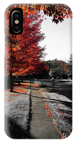 Fiery Fall Trees, Part 1 Phone Case by JMerrickMedia
