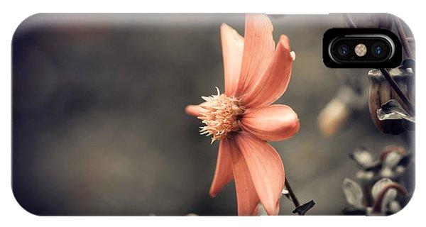 Blossom iPhone Case - Fall Season Red Flower Closeup by Iraua