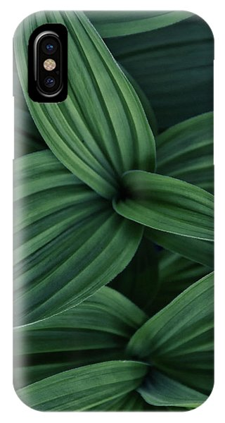 False Hellebore Plant Abstract IPhone Case