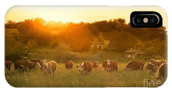Eating iPhone Case - Farmland Summer Scene In Sunset by Dark Moon Pictures