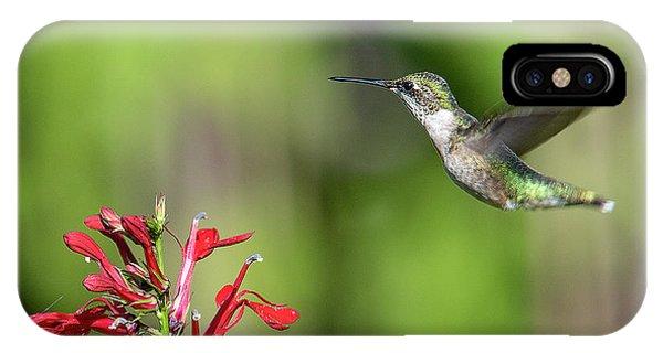 Female Ruby-throated Hummingbird Dsb0320 IPhone Case
