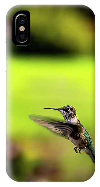 IPhone Case featuring the photograph Female Ruby Wings Forward by Onyonet  Photo Studios