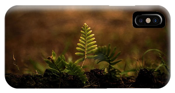 Fern Of Life IPhone Case