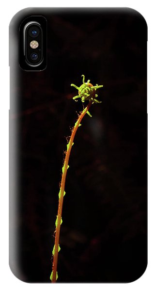 Fiddlefern Superstar IPhone Case