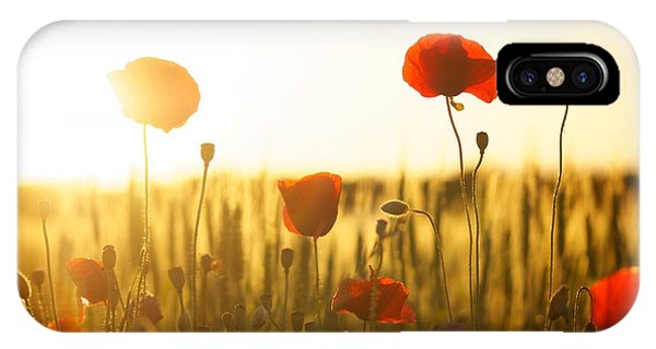 Field Of Poppies At Dawn IPhone Case