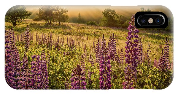 Fields Of Lupine IPhone Case