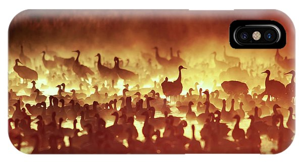 Fire Mist Sans Flight IPhone Case