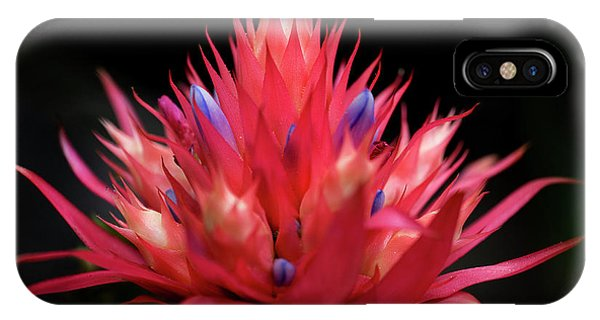 Flaming Flower IPhone Case