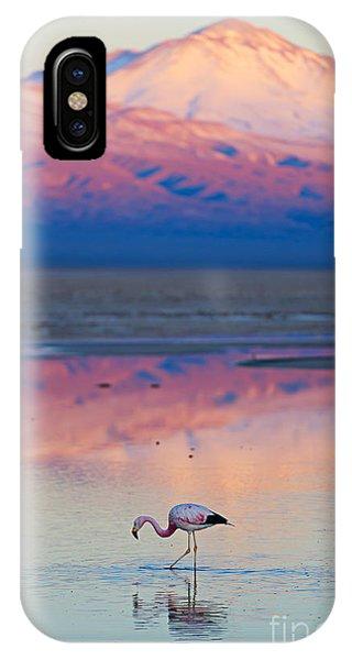 Salt Water iPhone Case - Flamingo, Pink Sunset Above Atacama by Longtaildog