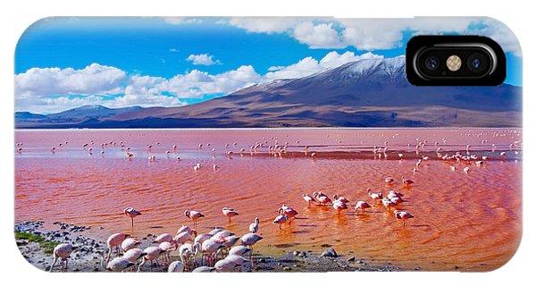 Salt Water iPhone Case - Flamingos In Laguna Colorada , Uyuni by Byelikova Oksana