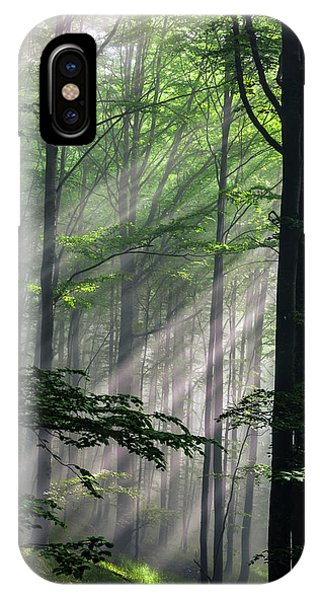 Forest iPhone Case - Fleeting Beams by Evgeni Dinev