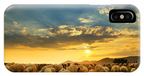 Farmland iPhone Case - Flock Of Sheep Grazing In A Hill At by Mihai tamasila