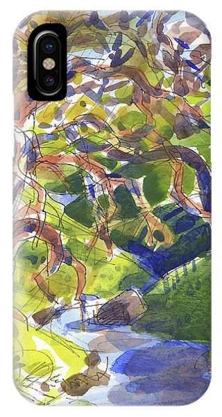 IPhone Case featuring the painting Flooded Trail by Judith Kunzle