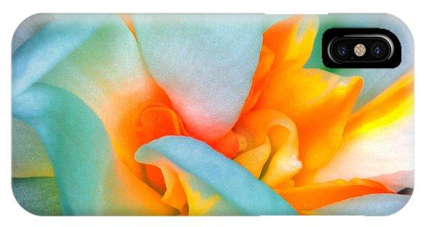 Botanical Garden iPhone Case - Flower by Dariush M