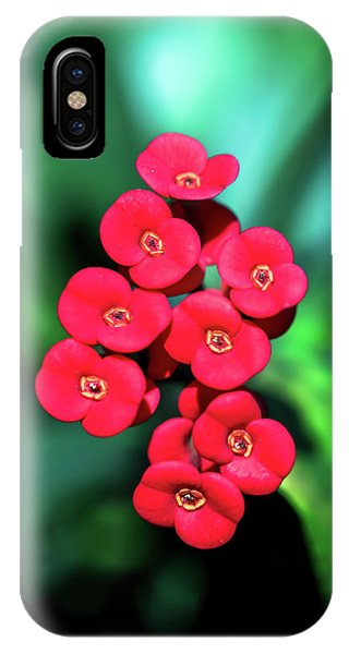 Flower Parade IPhone Case