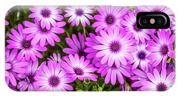 Petals iPhone Case - Flower Patterns Collection Set 04 by Az Jackson