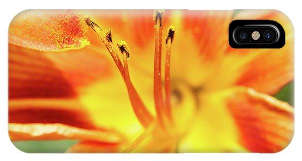 Flower Pollen IPhone Case
