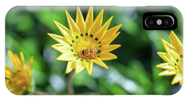 Yellow Flowers And A Bee IPhone Case