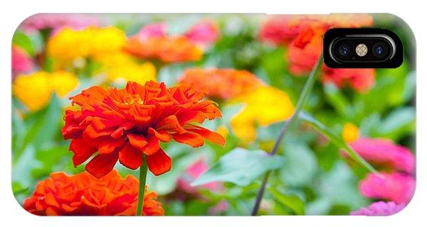 Fresh iPhone Case - Flowers In The Garden by Tonanakan