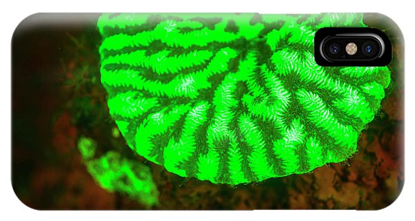 Fluorescence Emitted In Corals Phone Case by Stuart Westmorland