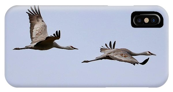 iPhone Case - Fly With Two Sandhills by Carol Groenen