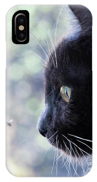 Flyby IPhone Case