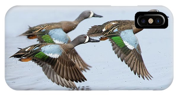 Teal Swan iPhone Case - Flying Colours by CR Courson