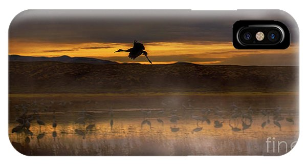 Flying Over Crane Pond IPhone Case