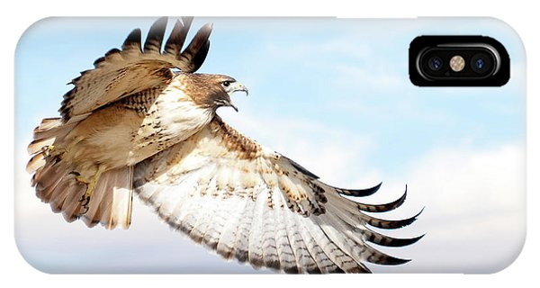 Flying Red-tailed Hawk IPhone Case