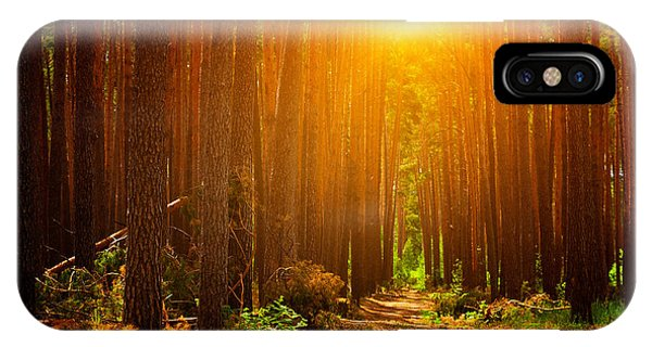 Fairy iPhone Case - Forest Landscape by Sunny Forest