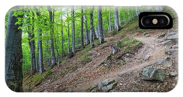 Forest On Balkan Mountain, Bulgaria IPhone Case