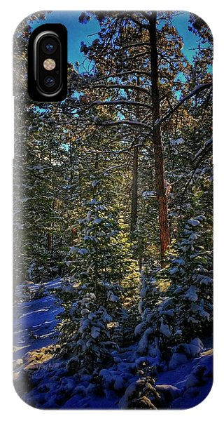 IPhone Case featuring the photograph Forest Shadows by Dan Miller
