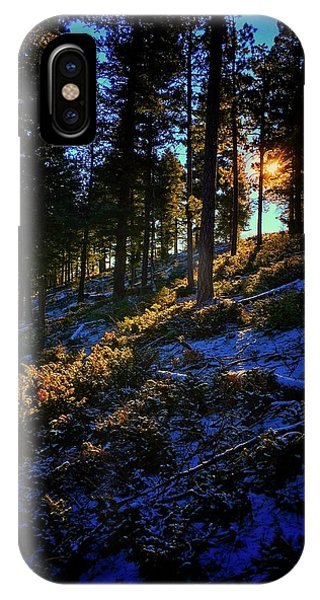 IPhone Case featuring the photograph Forest Sunrise by Dan Miller