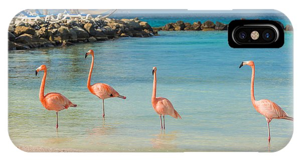 Salt Water iPhone Case - Four Flamingos On The Beach by Masterphoto