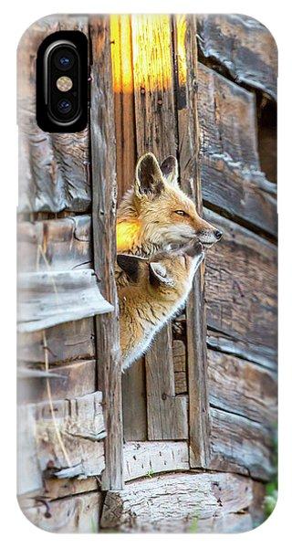 Fox Test  IPhone Case