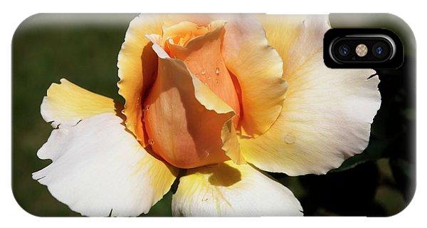 Fragrant Rose IPhone Case