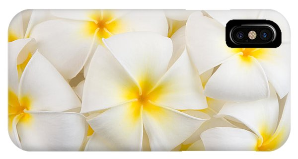 Culture iPhone Case - Frangipani Spa Flowers Background by Piyaset