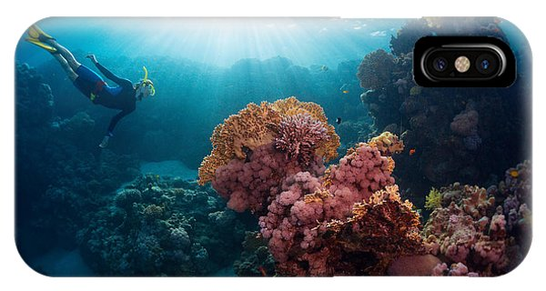Egyptian iPhone X Case - Free Diver Exploring Vivid Coral Reef by Dudarev Mikhail