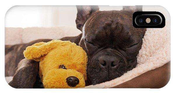 Small Dog iPhone Case - French Bulldog Dog Having A Sleeping by Javier Brosch